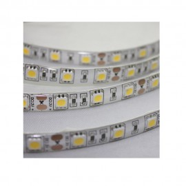 T.Blanca LED Extra 5m SMD 5050 IP65