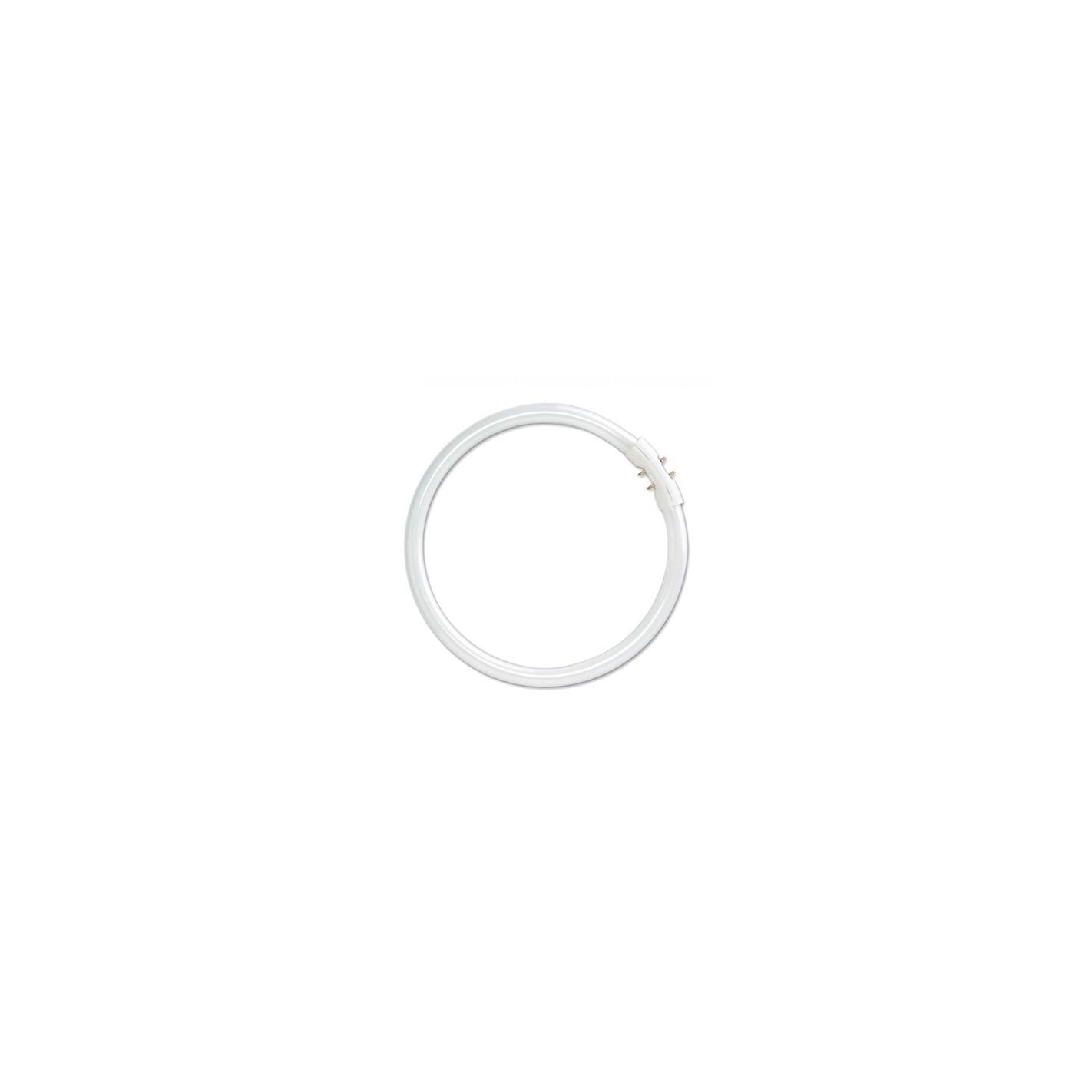 Tubo circular t5 de 22w de potencia luxram algsistemas - Tubo fluorescente circular ...